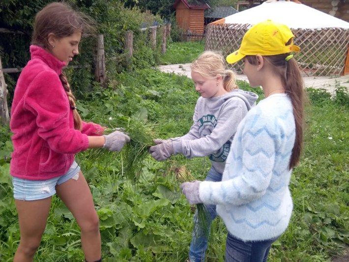 Подростки с сахарным диабетом пробуют себя в волонтерстве