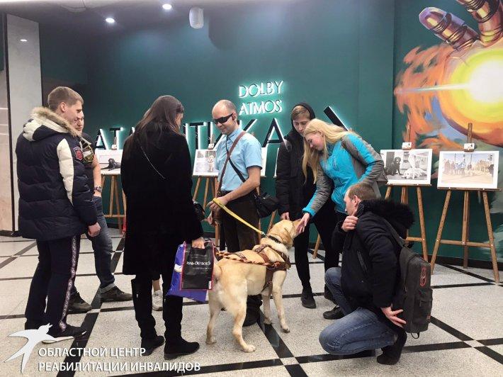 Первая фотовыставка собак-поводырей открыта!