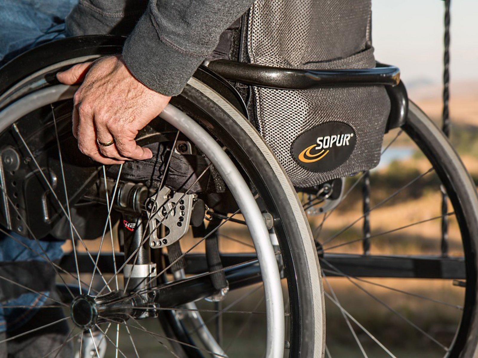 Образовательный сезон для специалистов соцсферы региона завершается темой, посвященной восстановлению мобильности в социальной реабилитации инвалидов